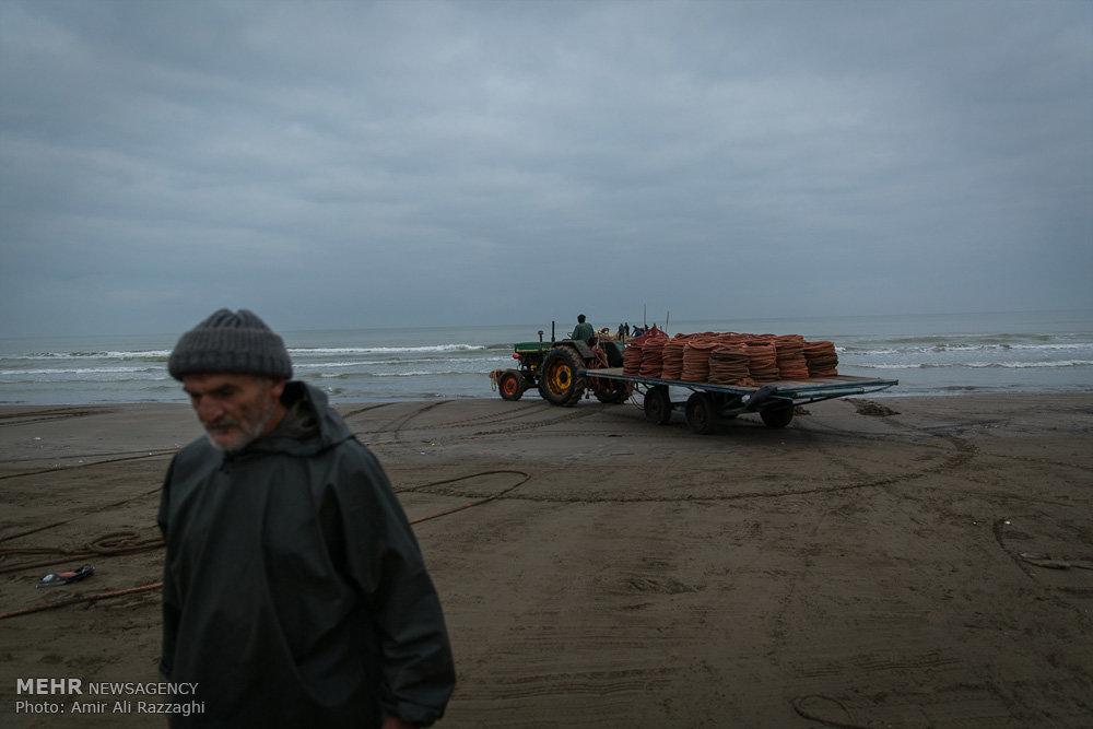 فصل ماهیگیری دریای خزر