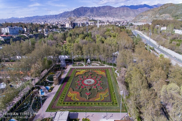 Virtually explore tulips in full bloom in park closed over coronavirus