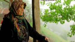 DEFC productions garner 39 international honors over last Iranian year