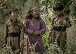 """A scene from director Mohammad-Hossein Mahdavian's drama """"Walnut Tree""""."""