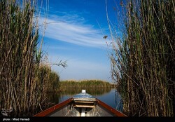 Hour-al-Azim Wetland seeking Ramsar site designation