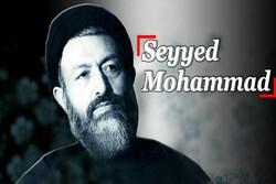 Seyyed Mohammad
