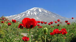 Prominent Mount Damavand struggling environmental issues