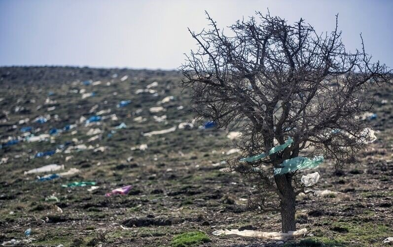 Save the planet: Iran takes step to reduce plastic bags