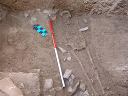 Skeleton of another 'Parthian lady' discovered in Isfahan