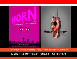 """This combination photo shows posters for the Iranian short movies """"Horn"""" and """"Song Sparrow""""."""