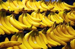 banana imports