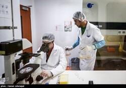 Iran improves in nanotechnology articles citation