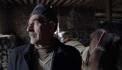 """A Horse Has More Blood Than a Human"" directed by Abolfazl Taluni."