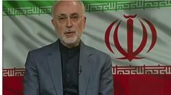 Ali Akbar Salehi, president of the Atomic Energy Organization of Iran