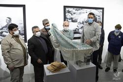 "Iran Photographers House hosts ""Children of Ruhollah"""