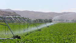 Modern irrigation systems implemented in 185,000 hectares of farmlands