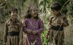 """Walnut Tree"" to go on screen in Sanandaj"