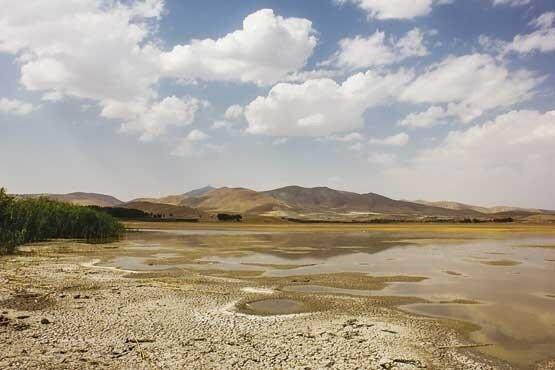 SDSs affect 43% of wetlands nationwide