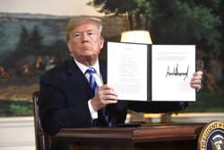 Trump mad dog