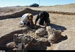 Tehran-Rome projects
