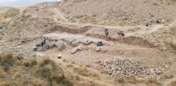 Archaeologist accentuates proper maintenance of Achaemenid 'masterpiece'