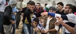 """""""Gaza"""""""