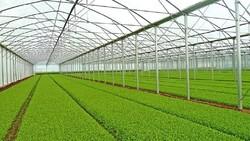 agricultural parks