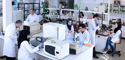 Iran ranks third for top researchers in Islamic world 2020