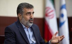 Iran denies meeting between martyr Fakhrizadeh, IAEA officials