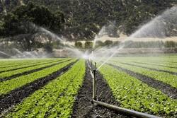 Iranian researchers win international water conservation award