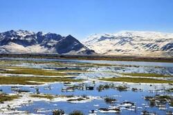 Gandoman wetland hosting 30,000 migratory birds