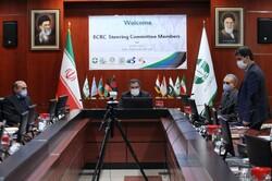 Tehran hosts online meeting on Basel, Stockholm environmental conventions