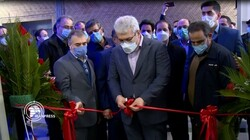Iran opens first innovation, technology center in Africa