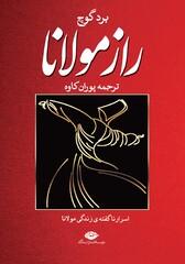 """""""Rumi's Secret"""""""