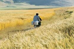 """""""The Wind Will Carry Us"""" by Abbas Kiarostami."""