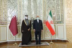 Qatari, Iranian FMs hold talks in Tehran