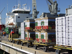 export terminal
