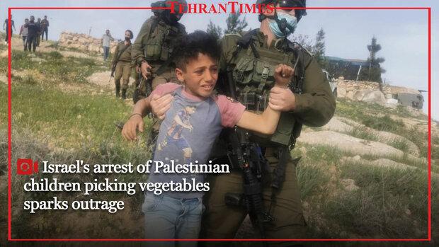 Israel's arrest of Palestinian children picking vegetables sparks outrage