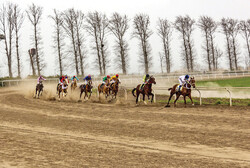 Horse racing competition held in Gonbad-e Kavus