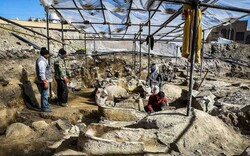 Archaeologists prepare to make final attempt to unearth temple