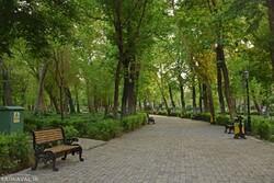 Iranians mark Nature Day at home amid coronavirus fears