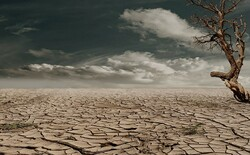 Iran to probably face drought this year: expert