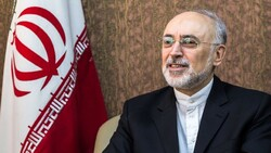 Iran's nuclear chief Salehi