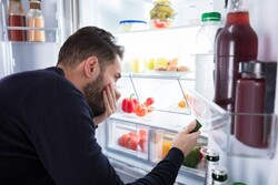 Eliminate the bad smell of refrigerator