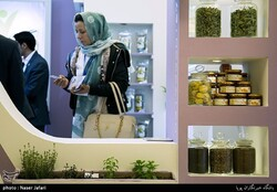 Syrian expo to showcase Iran's potential in medicinal plants industry
