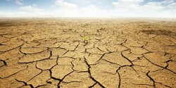 Some $766m proposed to drought management projects