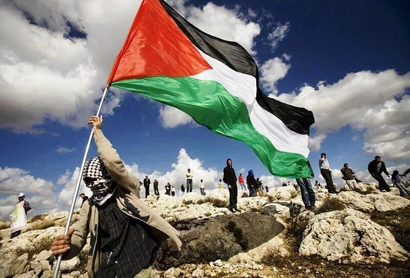 The normalization will not make the Palestinian cause disappear: Political analyst