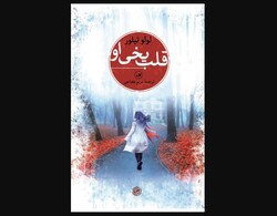 """Front cover of a Persian translation of Lulu Taylor's novel """"Her Frozen Heart""""."""