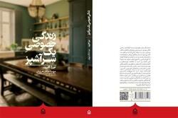 "Cover of the Persian translation of Nora Ephron's novel ""Heartburn""."