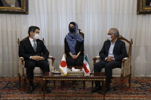 Lake Urmia revival is gratifying: Japanese envoy