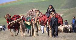 tribe tourism