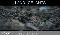 """A poster for """"The Land of Ants"""" by Isa Babai."""