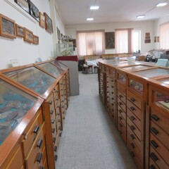 Tehran geological museum gets affiliated with UMAC