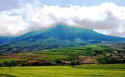 Legal boundaries of UNESCO-designated Hyrcanian Forests declared